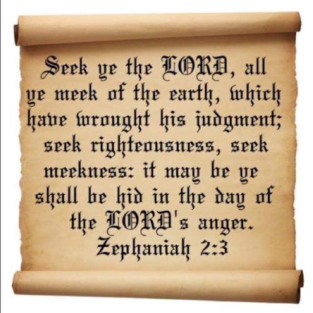 Zep2-3